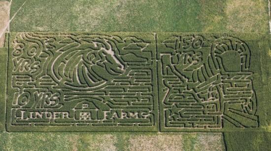 2013 boise corn maze garden city eagle merdian Idaho oil changes