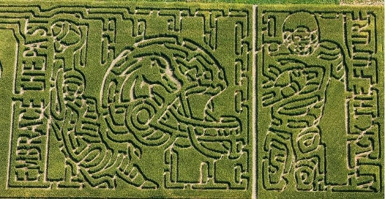 boise state corn maze idaho meridian garden city eagle nampa treasure valley einstein's oilery oil changes (550x284)